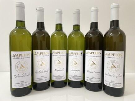 Kolekce bílých vín