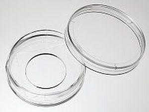 glass_bottom_dish_35_20_medium