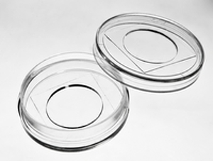 glass_top_glass_bottom_dish_35_20_medium