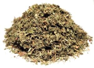 Jahodník zahradní list - řez