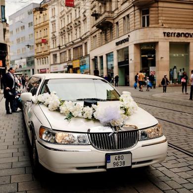 VIP svatba červen 2017 (21)