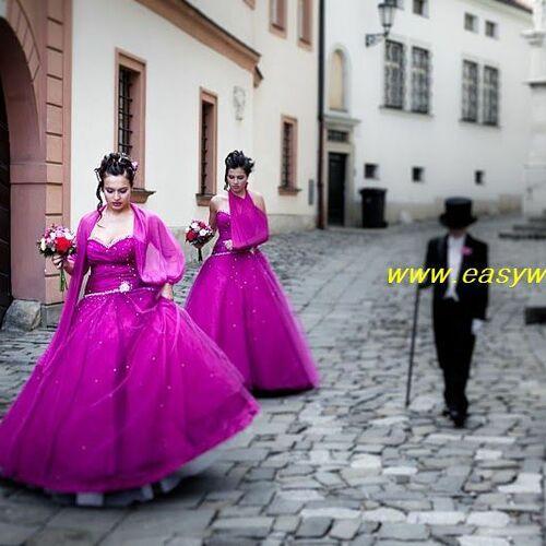 Stribrna svatba 2011 (21)