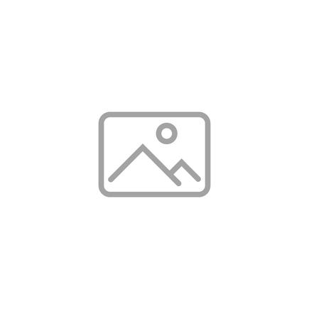 Nástěnný držák na 2 květináče Amy černý D20x14 H50